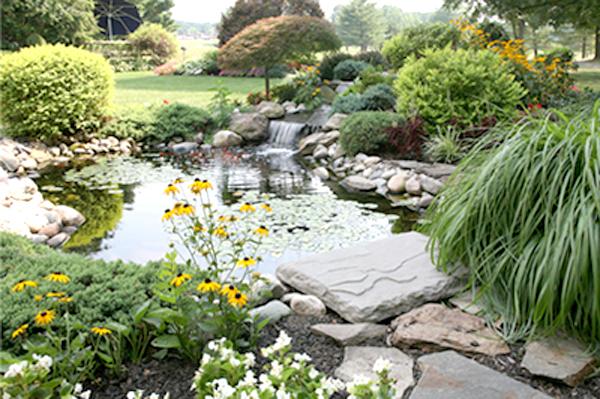 Mẫu nhà đẹp biệt thự vườn xanh ngát với tiểu cảnh sân vườn ấn tượng - 06