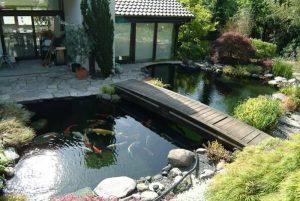 Mẫu thiết kế nhà đẹp phong cách mới - Tiểu cảnh sân vườn