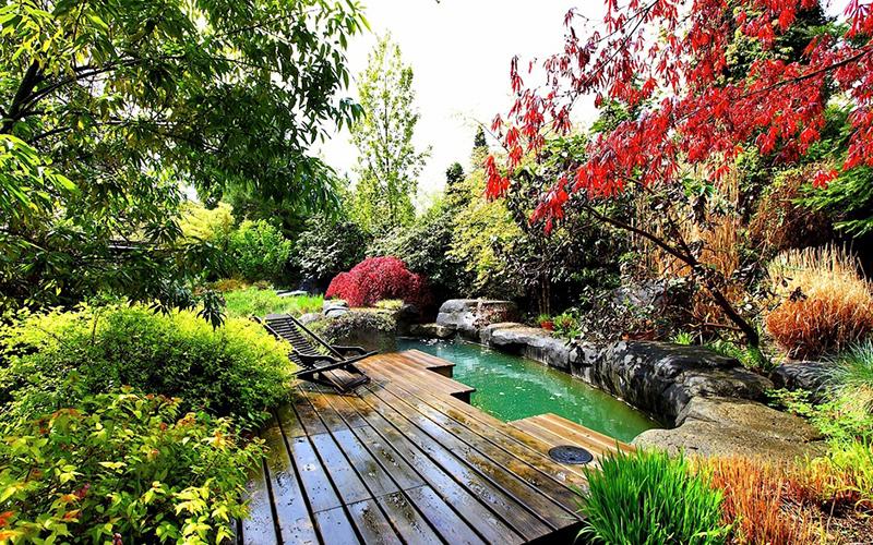 Thiết kế sân vườn đẹp hợp phong thủy - Ảnh 3