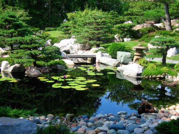 Thiết kế sân vườn tiểu cảnh sao cho bắt mắt 3