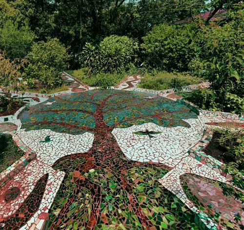 Thiết kế sân vườn tiểu cảnh theo phong cách hiện đại 5