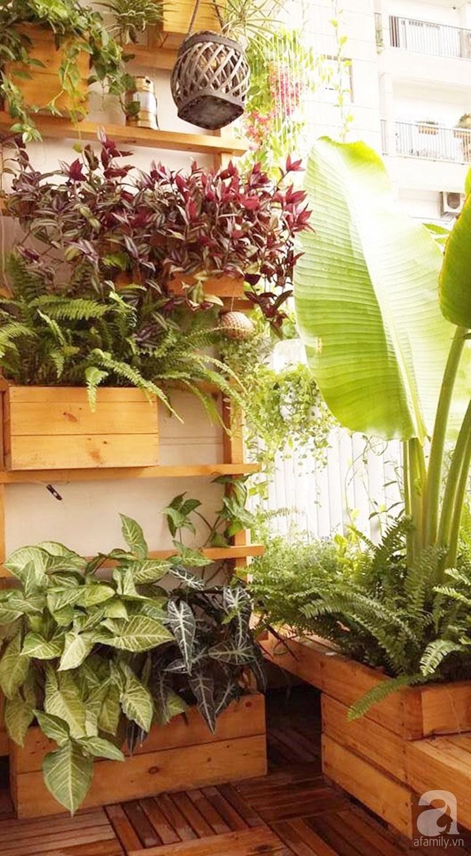 Mẹo trồng cây tạo bóng mát cho nhà ống 5