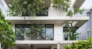 Biệt thự 3 tầng Sài Gòn tràn ngập sắc xanh