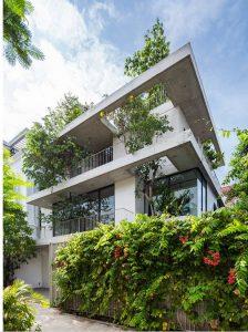 Biệt thự 3 tầng Sài Gòn tràn ngập sắc xanh. 5