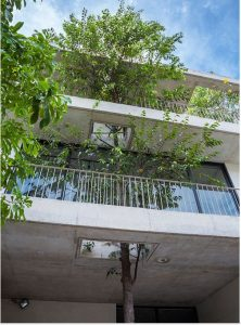 Biệt thự 3 tầng Sài Gòn tràn ngập sắc xanh. 6