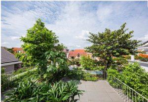 Biệt thự 3 tầng Sài Gòn tràn ngập sắc xanh. 9