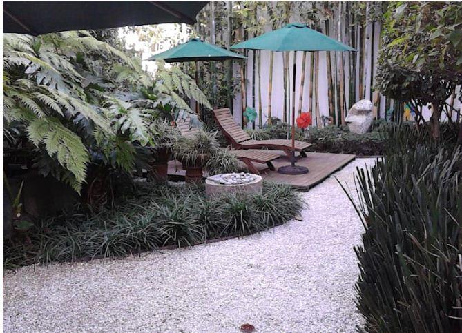 Thiết kế vườn sau cho nhà ống đẹp mê ly. 5