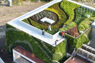 Chống thấm cho vườn sân thượng nhà biệt thự