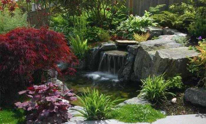 thiết kế tiểu cảnh sân vườn-4