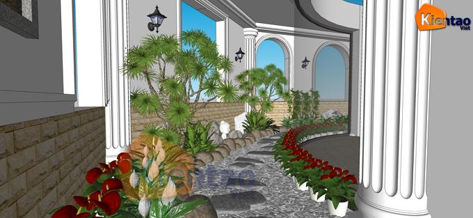 Thiết kế sân vườn, tiểu cảnh cho hông nhà của biệt thự